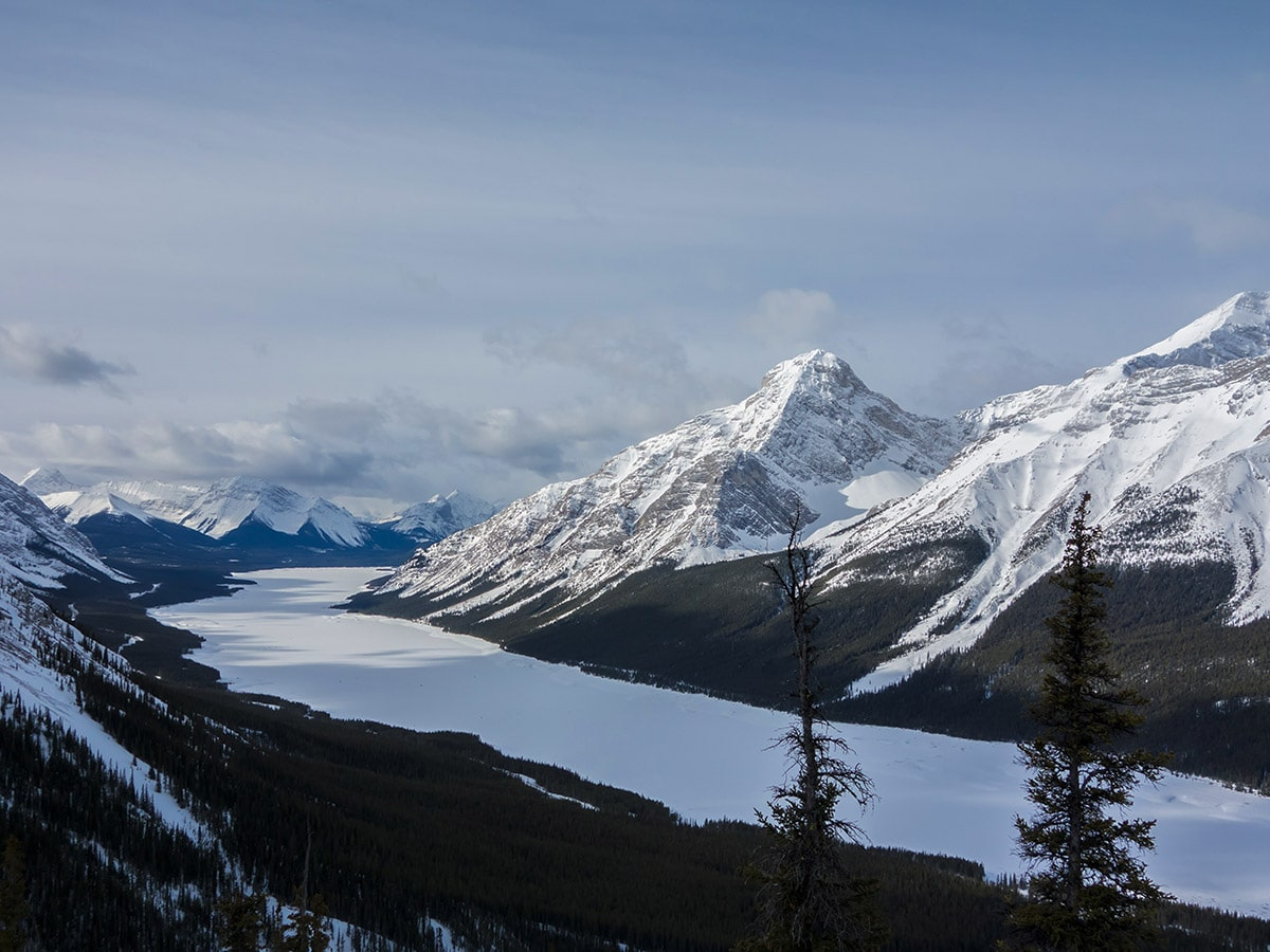 Views southwest on Little Lougheed snowshoe trail in Kananaskis near Canmore