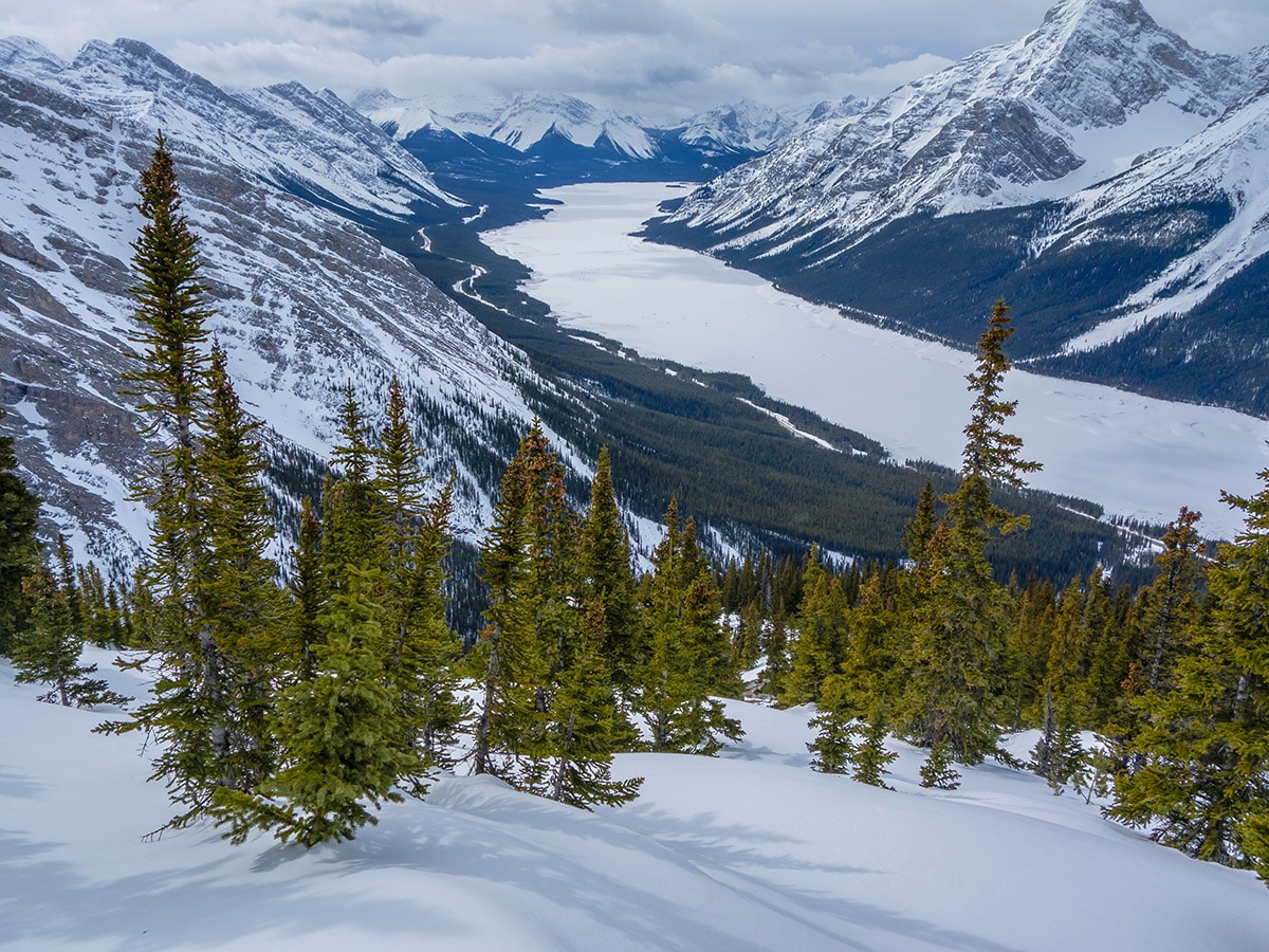 Views from Little Lougheed snowshoe trail in Kananaskis near Canmore