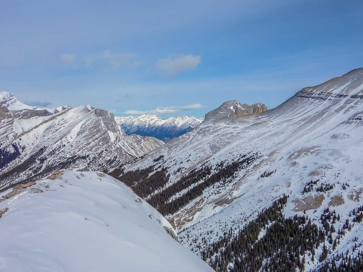 View north from Little Lougheed snowshoe trail in Kananaskis near Canmore