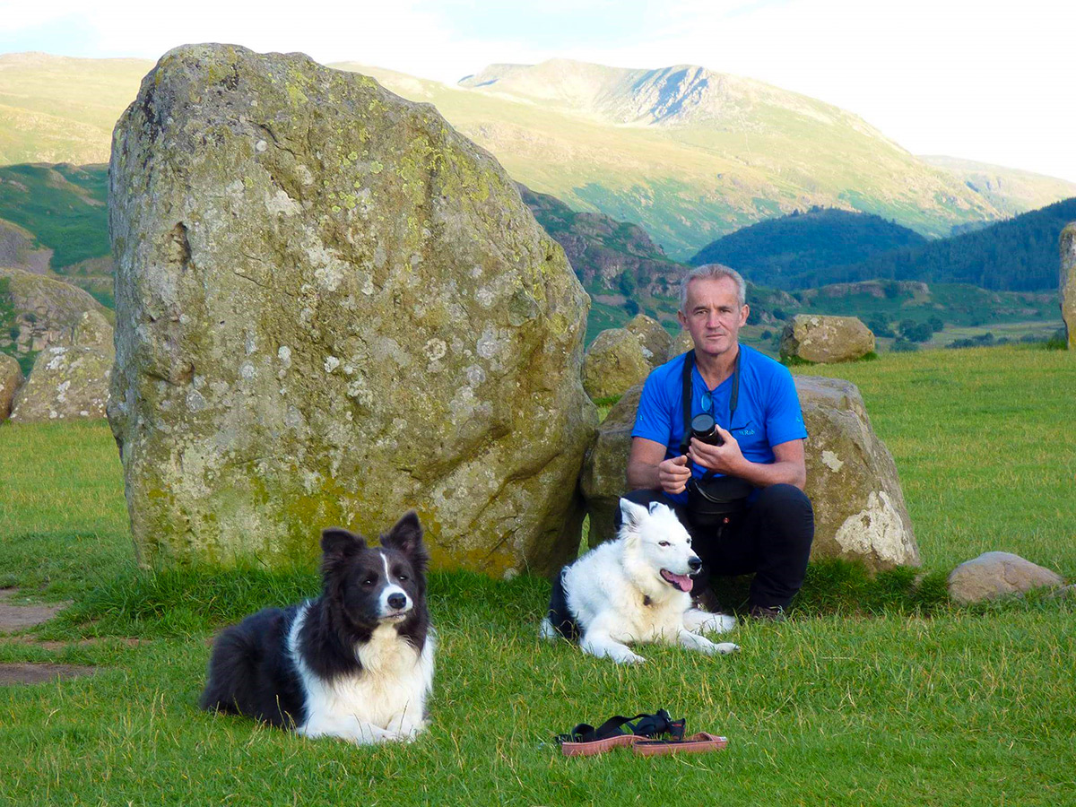 Hiker with two border collies
