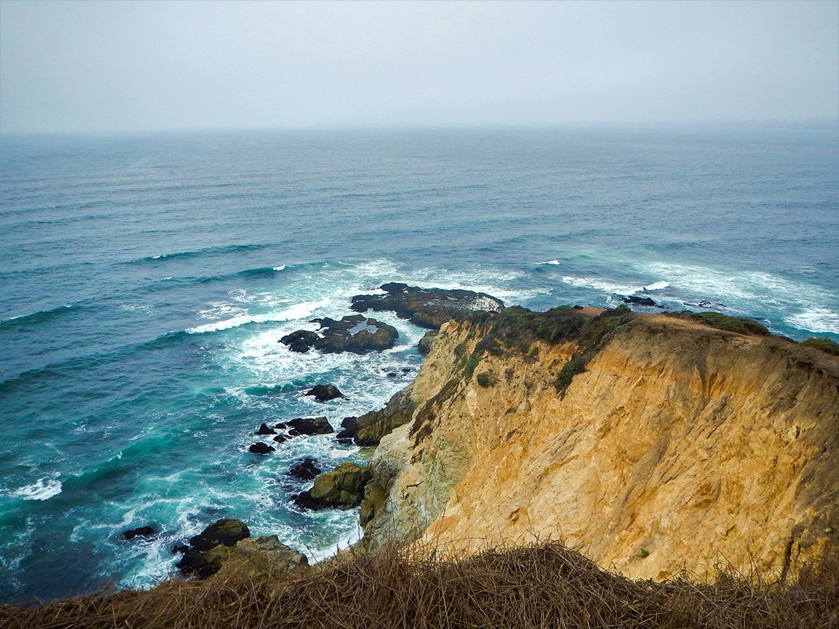 Point Tomales View