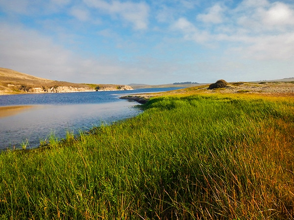 Hiking the Abbotts Lagoon near San Francisco