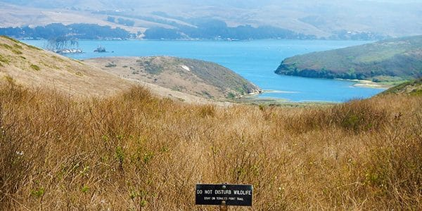 Tomales Point hike in North Bay of San Francisco, California