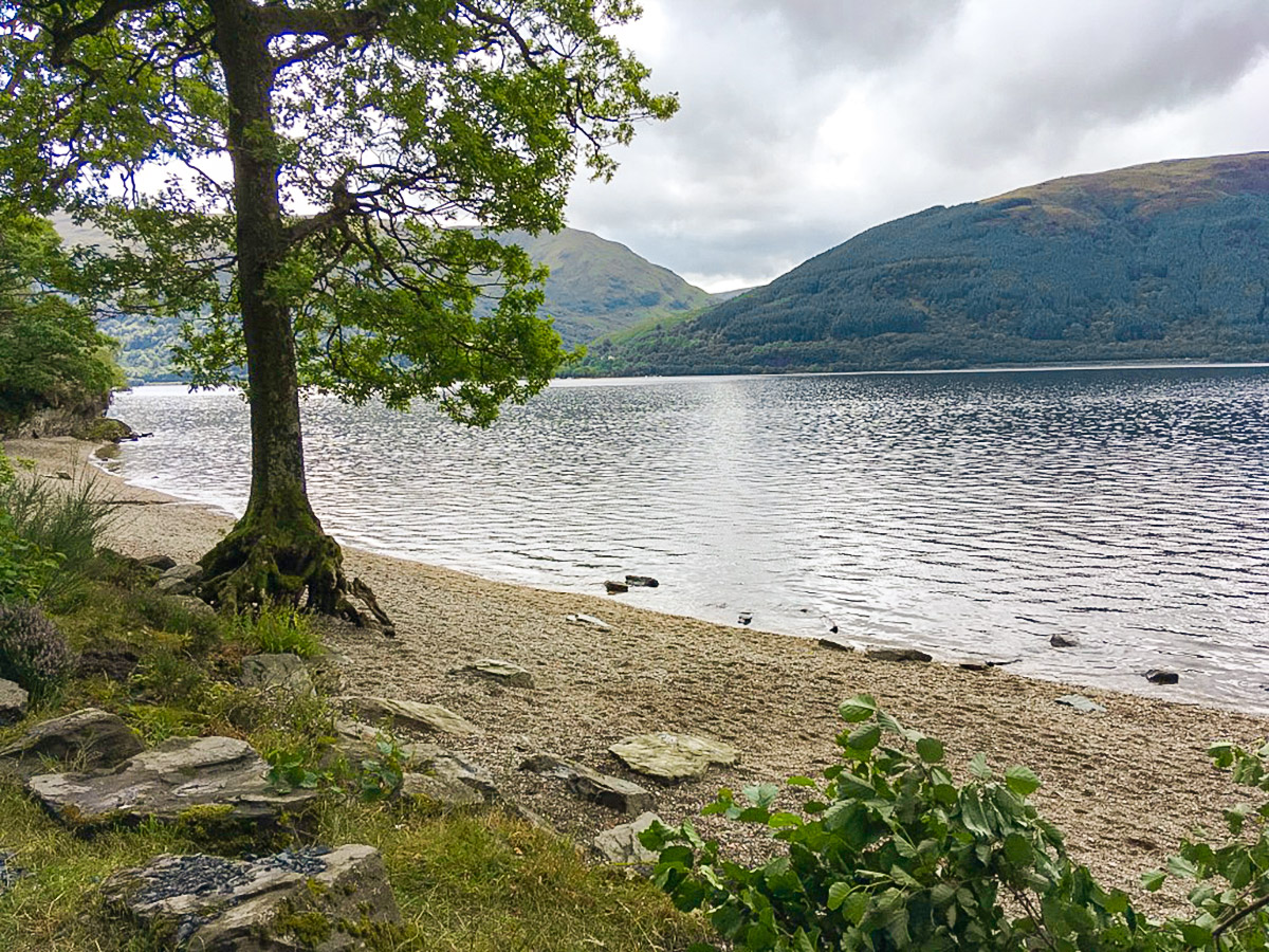 Shores of the lake on Ben Lomond hike in Loch Lomond and The Trossachs region in Scotland
