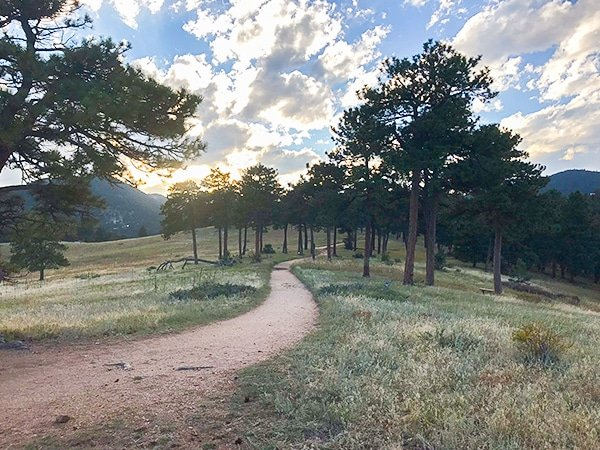 Mountain Biking in Betasso Preserve near Boulder