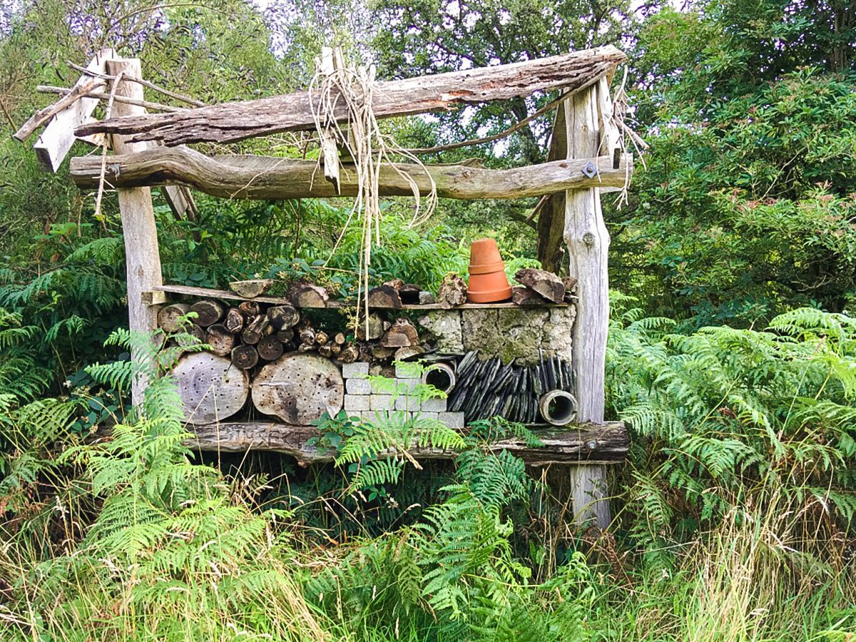 Bug hotel as seen from Cashel Forest hike in Loch Lomond and The Trossachs region in Scotland