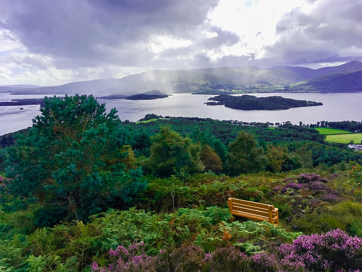 Viewpoint views to the south on Cashel Forest hike in Loch Lomond and The Trossachs region in Scotland