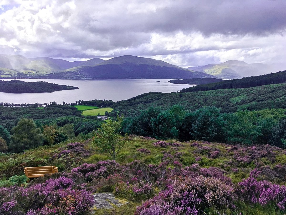 Viewpoint views to the north of Cashel Forest hike in Loch Lomond and The Trossachs region in Scotland