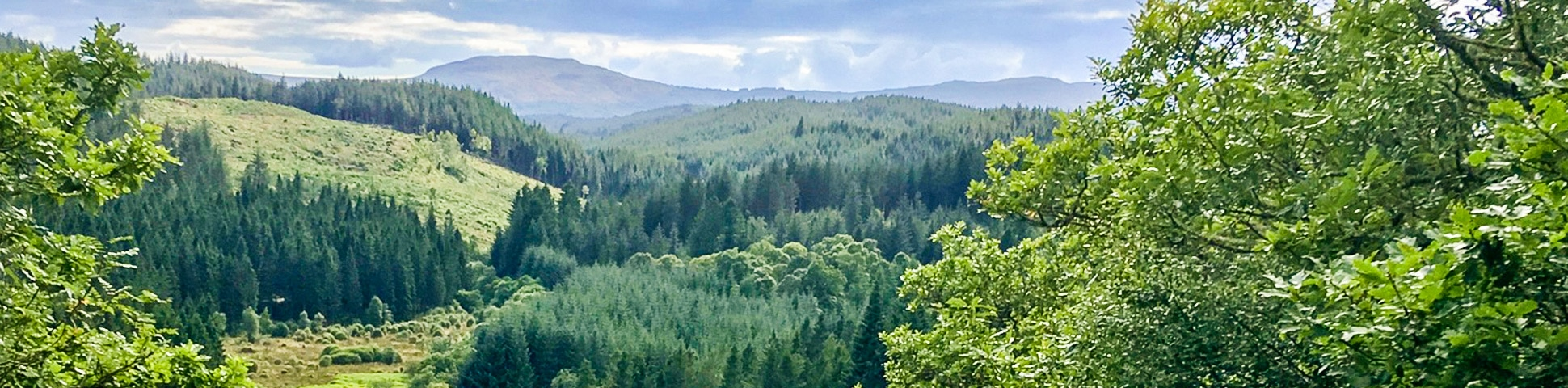 Panorama on Doon Hill Fairy Trail hike in Loch Lomond and The Trossachs area in Scotland