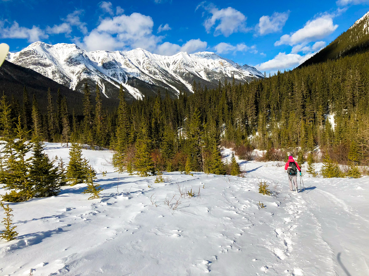 Beginning of Goat Creek to Banff Springs XC ski trail in Canmore and Banff National Park