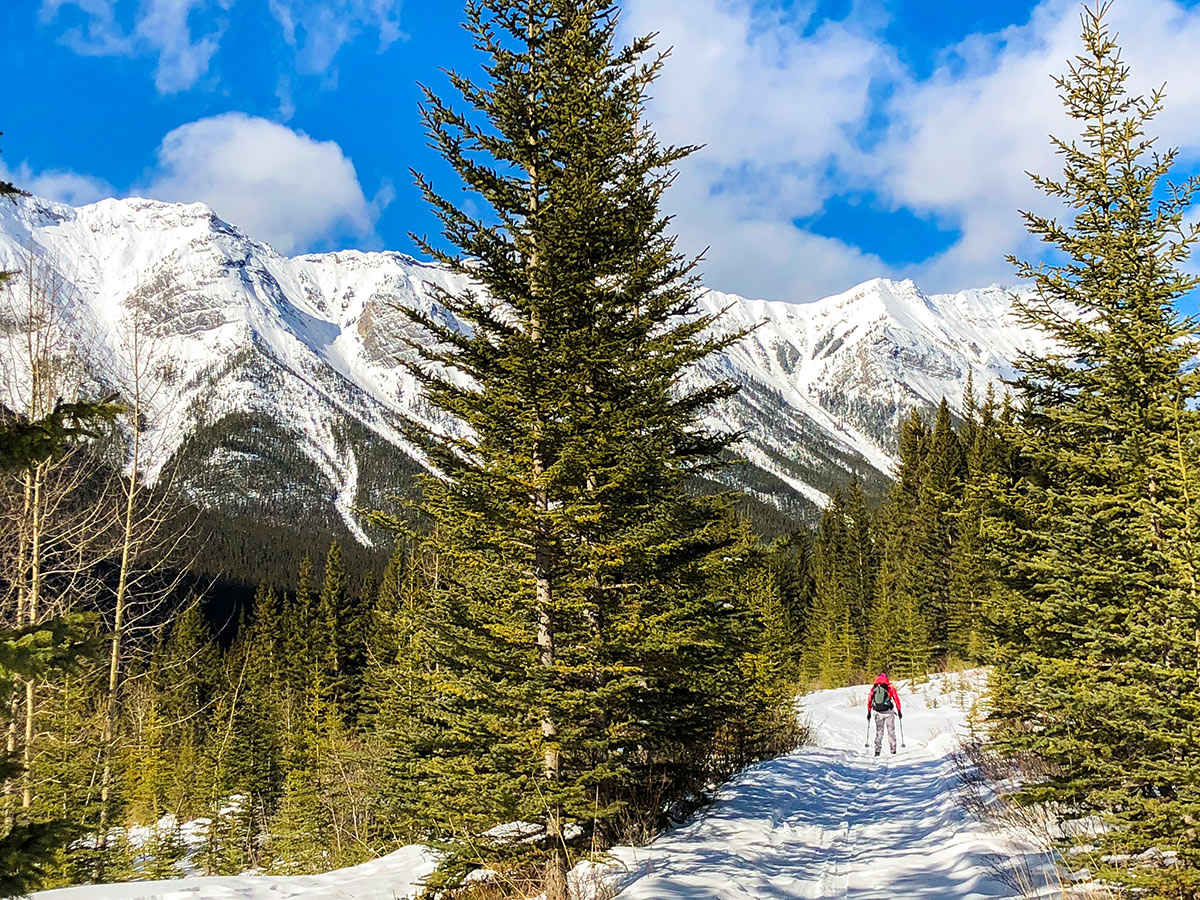 Early views on Goat Creek to Banff Springs XC ski trail in Canmore and Banff National Park