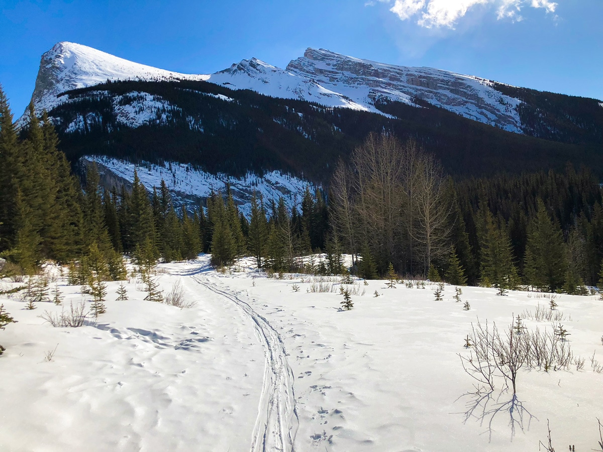 Winter views on Goat Creek to Banff Springs XC ski trail in Canmore and Banff National Park
