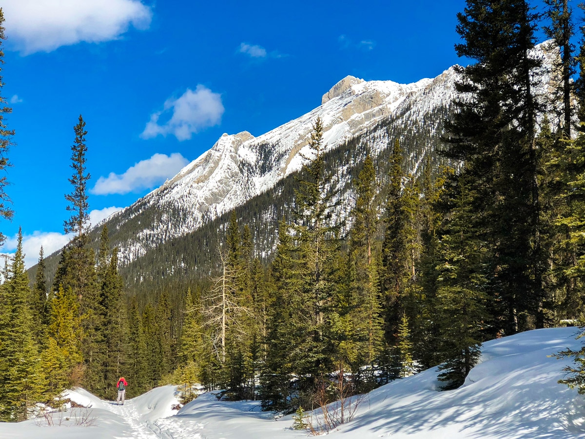 Stunning scenery on Goat Creek to Banff Springs XC ski trail in Canmore and Banff National Park