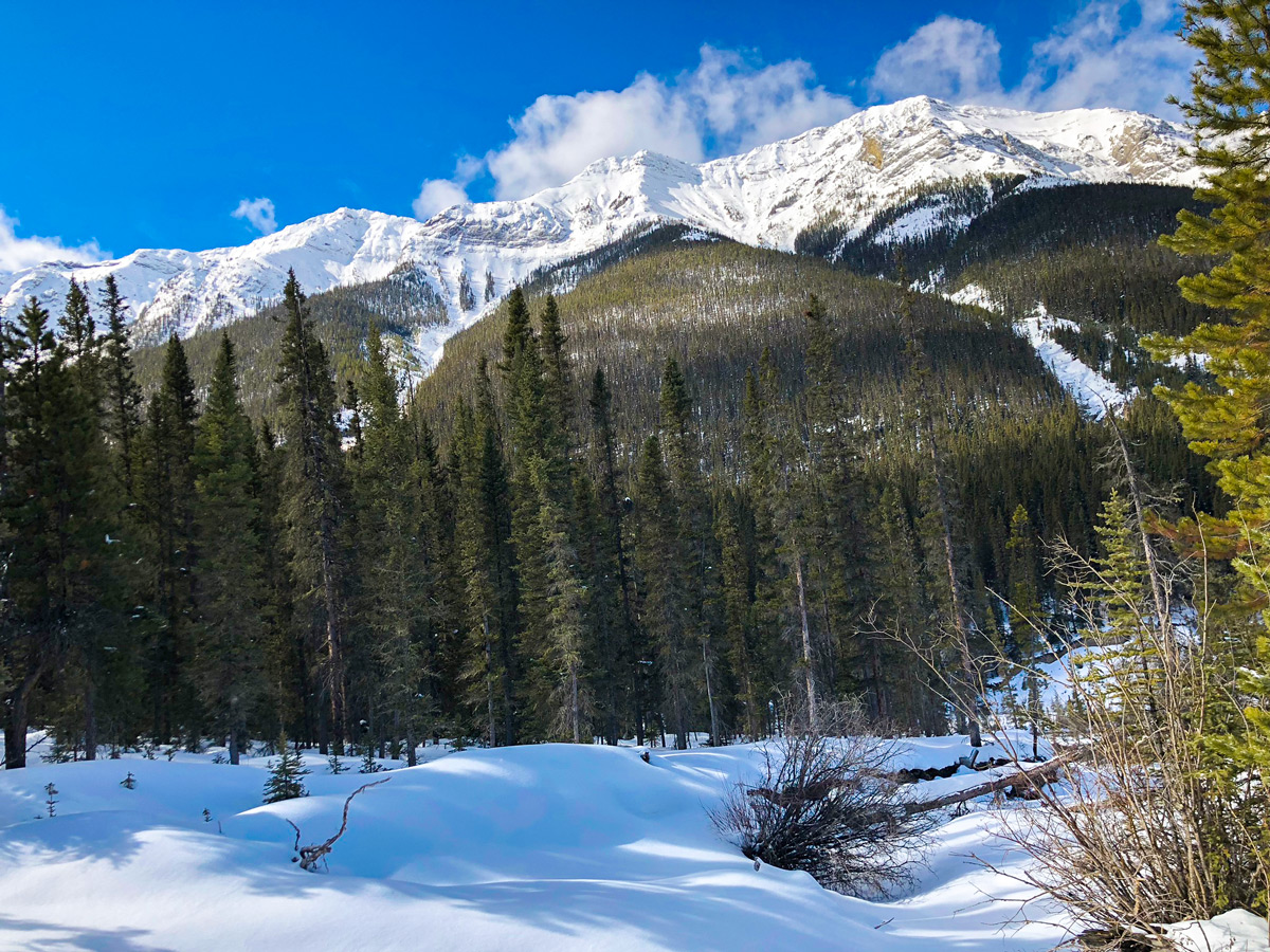 Mountain views on Goat Creek to Banff Springs XC ski trail in Canmore and Banff National Park