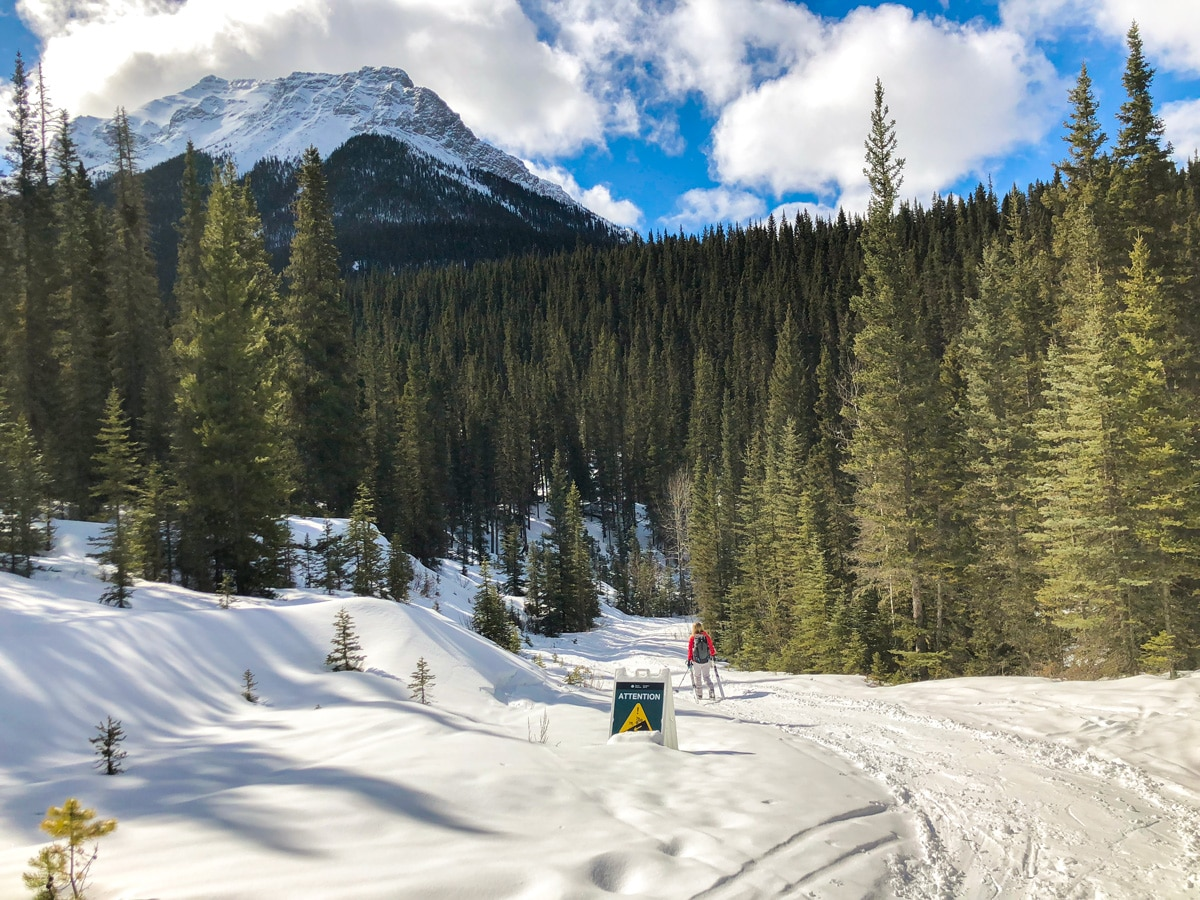 Downhill path on Goat Creek to Banff Springs XC ski trail in Canmore and Banff National Park
