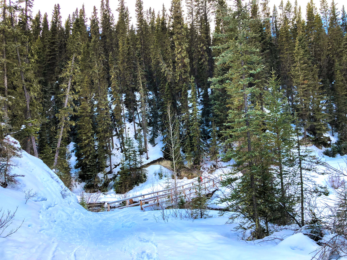Bridge on Goat Creek to Banff Springs XC ski trail in Canmore and Banff National Park