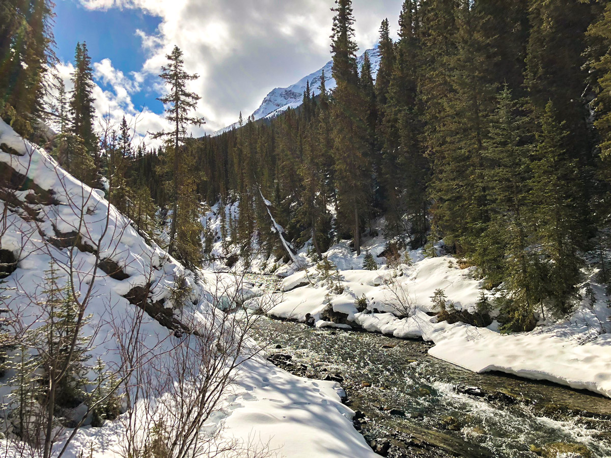 Views from the bridge on Goat Creek to Banff Springs XC ski trail in Canmore and Banff National Park