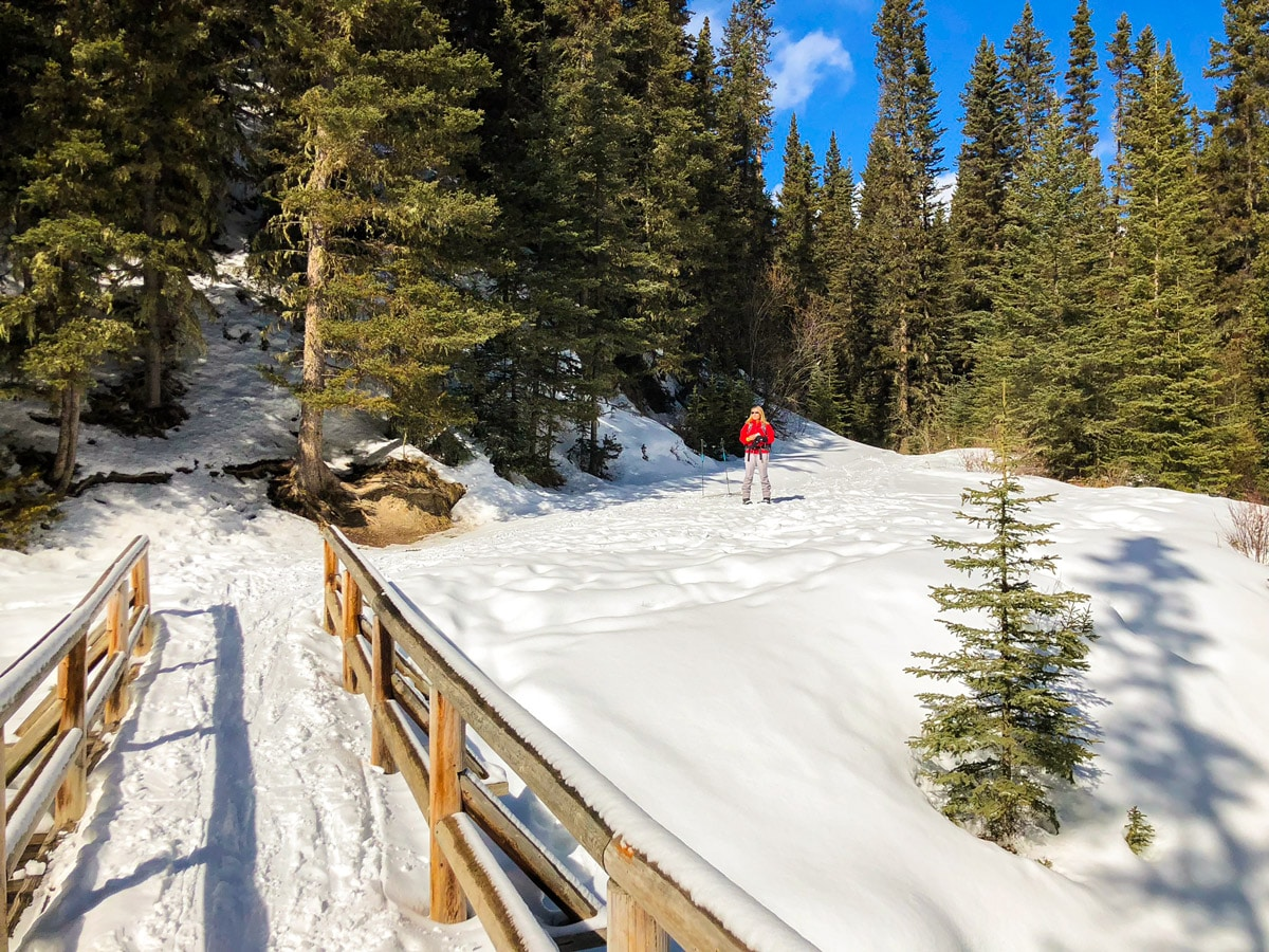 Snowy path of Goat Creek to Banff Springs XC ski trail in Canmore and Banff National Park