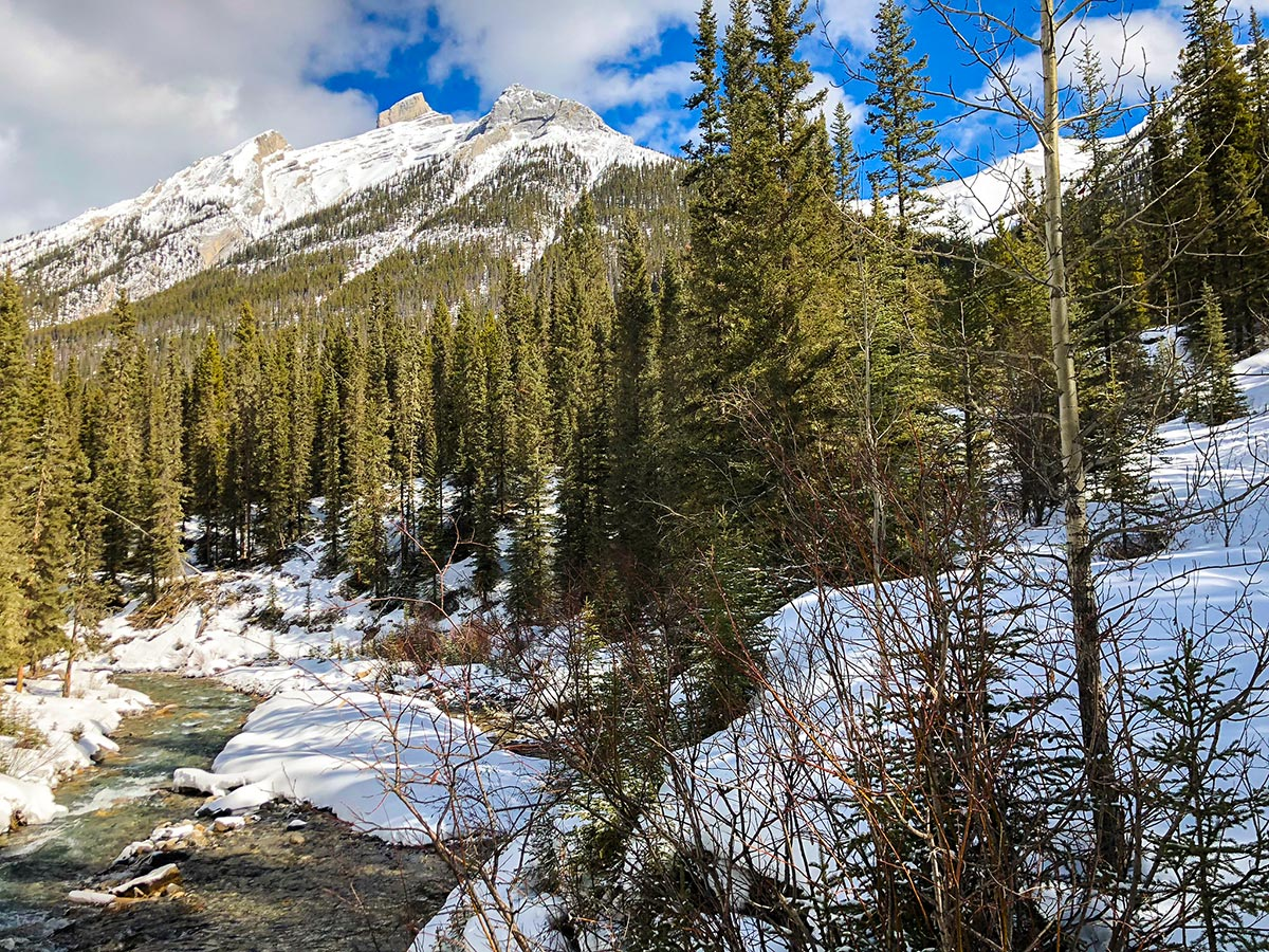 Stunning views on Goat Creek to Banff Springs XC ski trail in Canmore and Banff National Park