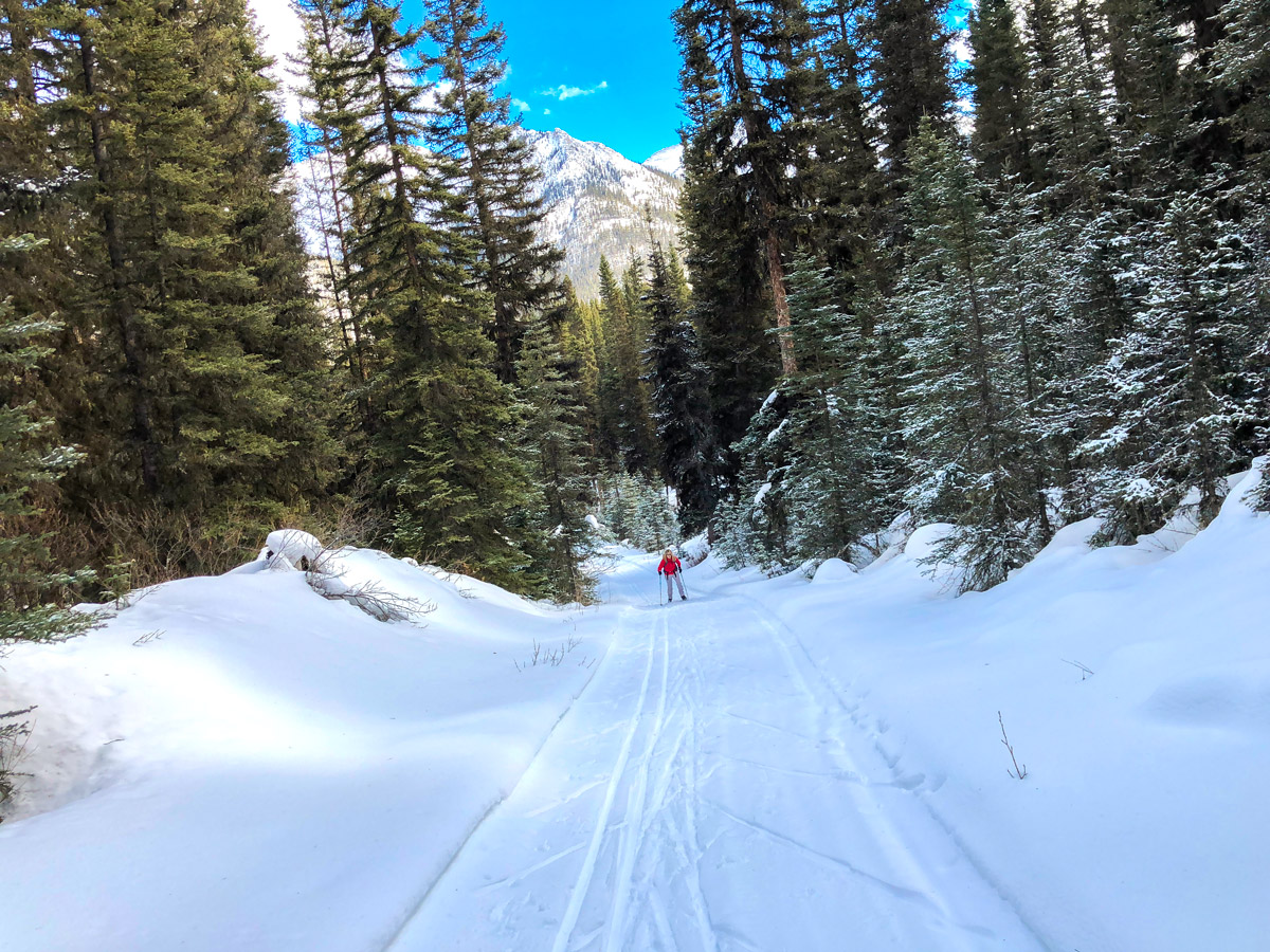 Beautiful views on Goat Creek to Banff Springs XC ski trail in Canmore and Banff National Park