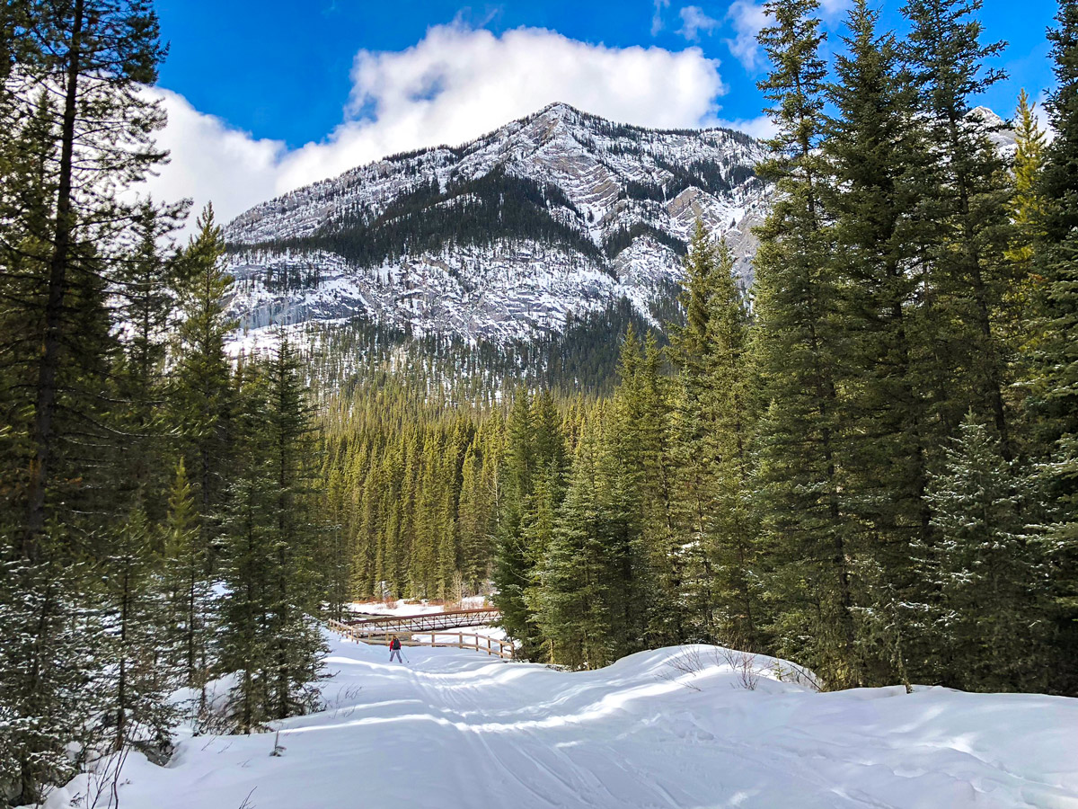 Skiing through the bridge on Goat Creek to Banff Springs XC ski trail in Canmore and Banff National Park