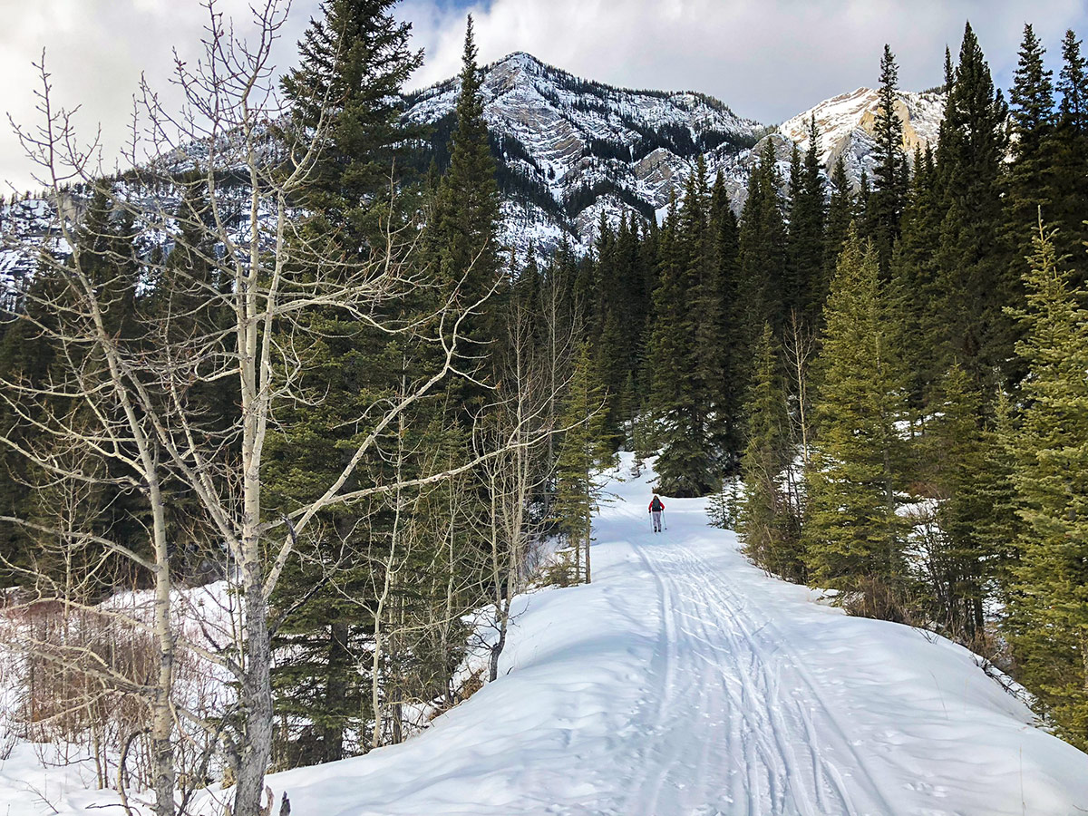 Approaching Banff on Goat Creek to Banff Springs XC ski trail in Canmore and Banff National Park
