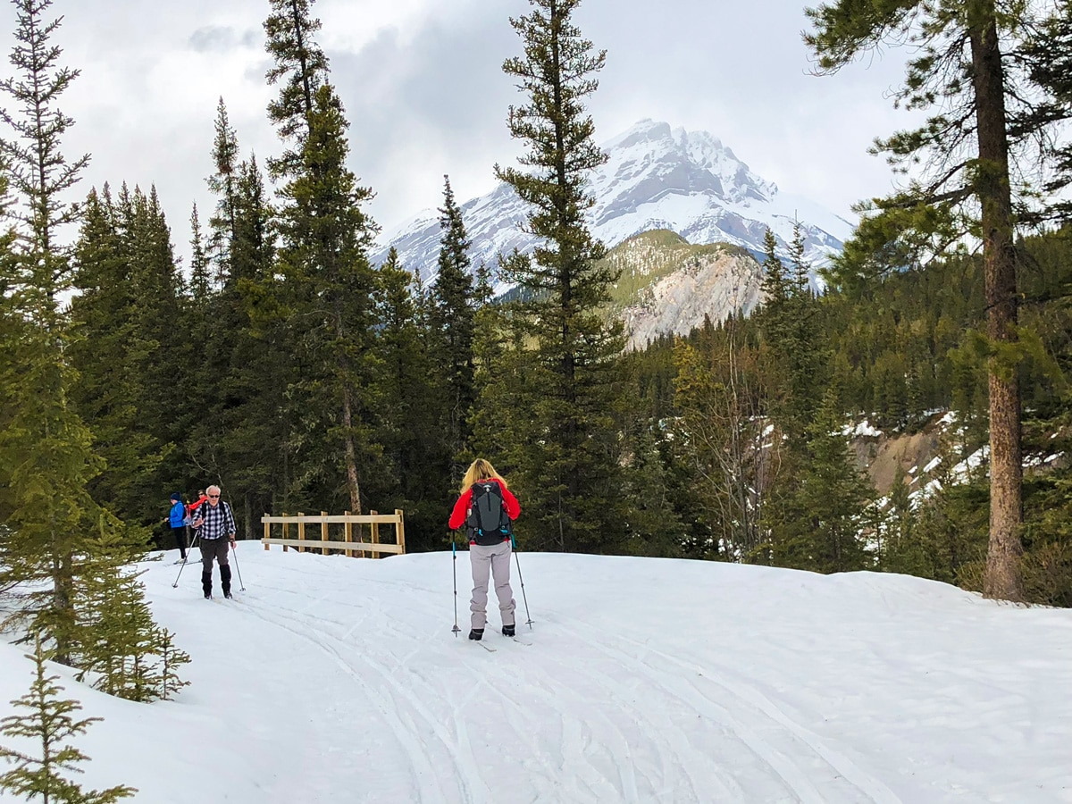Skiers on Goat Creek to Banff Springs XC ski trail in Canmore and Banff National Park