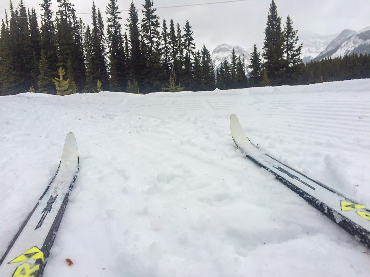 Great scenery on Elk Pass XC ski trail near Kananaskis and Canmore