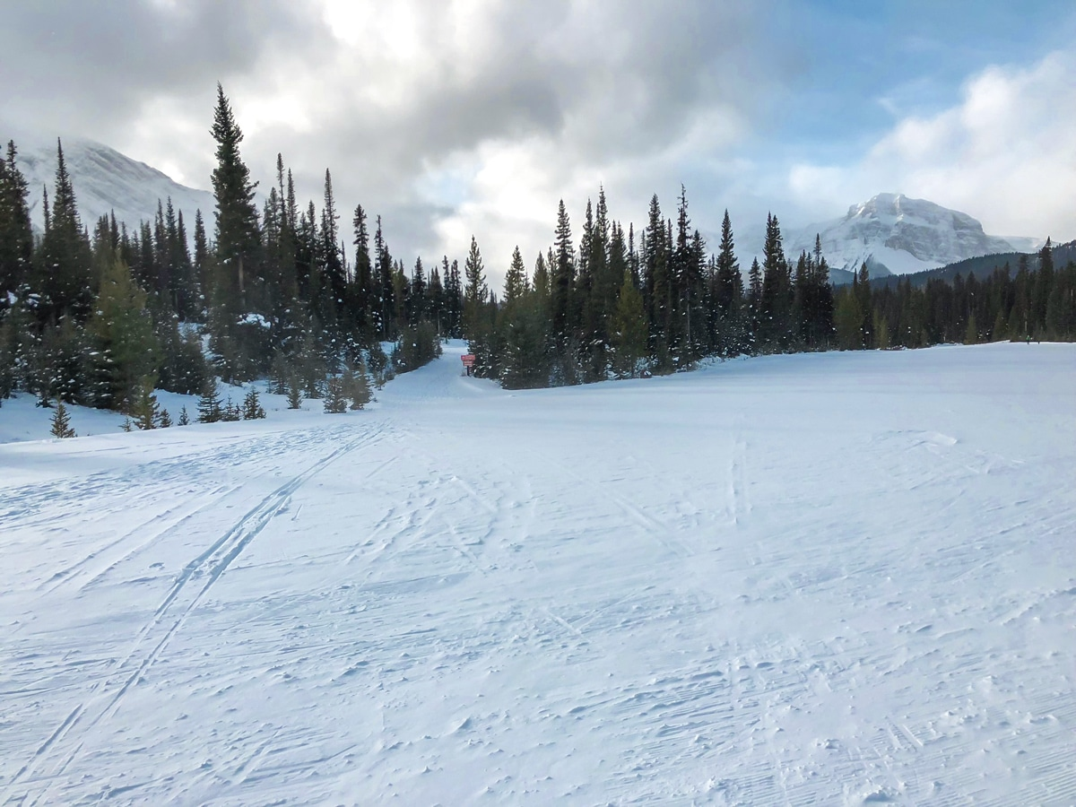 Great path of Mt Shark XC ski trail near Kananaskis and Canmore in the Canadian Rockies