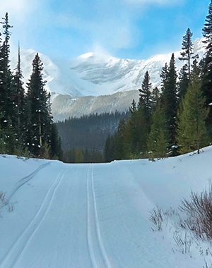 Mt Shark XC ski trail near Kananaskis and Canmore in the Canadian Rockies