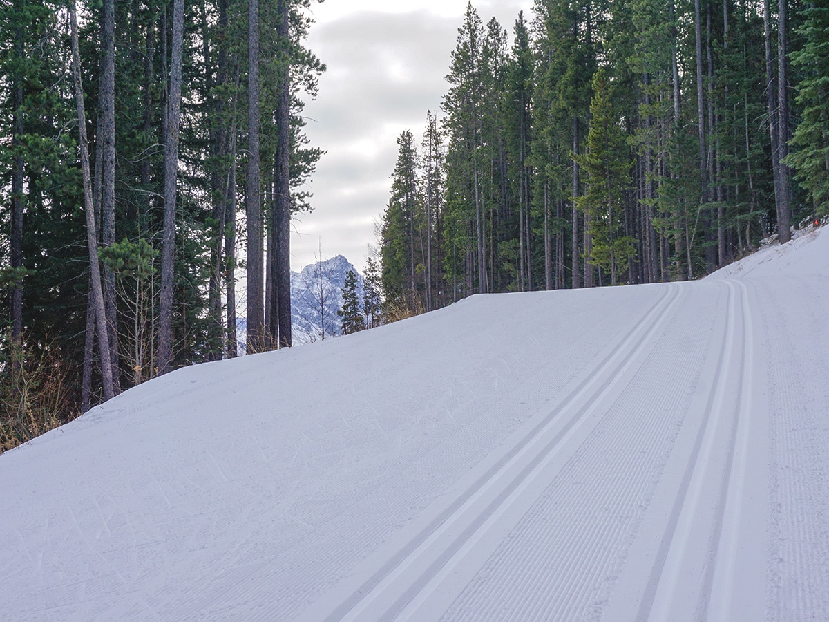 Skiing uphill on Canmore Nordic Centre XC ski trail in Canmore near Banff National Park