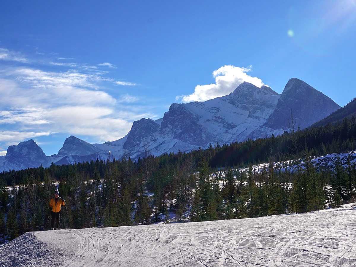 Views from the meadow on Canmore Nordic Centre XC ski trail in Canmore near Banff National Park