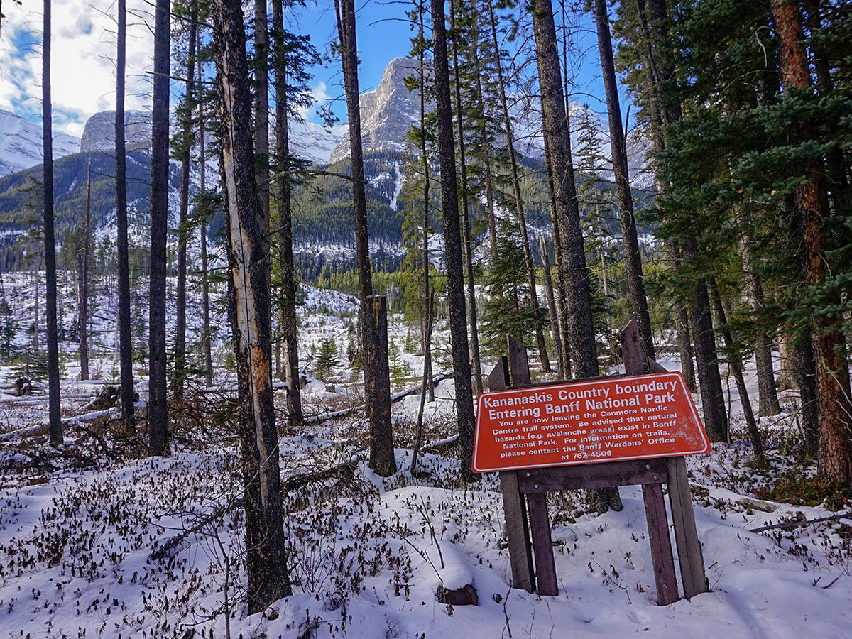 End of the trail on Canmore Nordic Centre XC ski trail in Canmore near Banff National Park