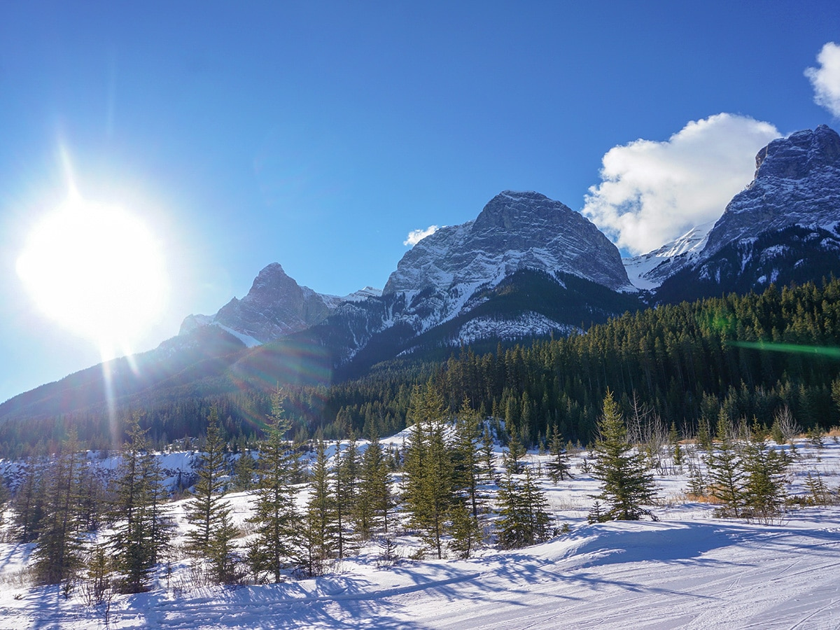 Skiing back on Canmore Nordic Centre XC ski trail in Canmore near Banff National Park