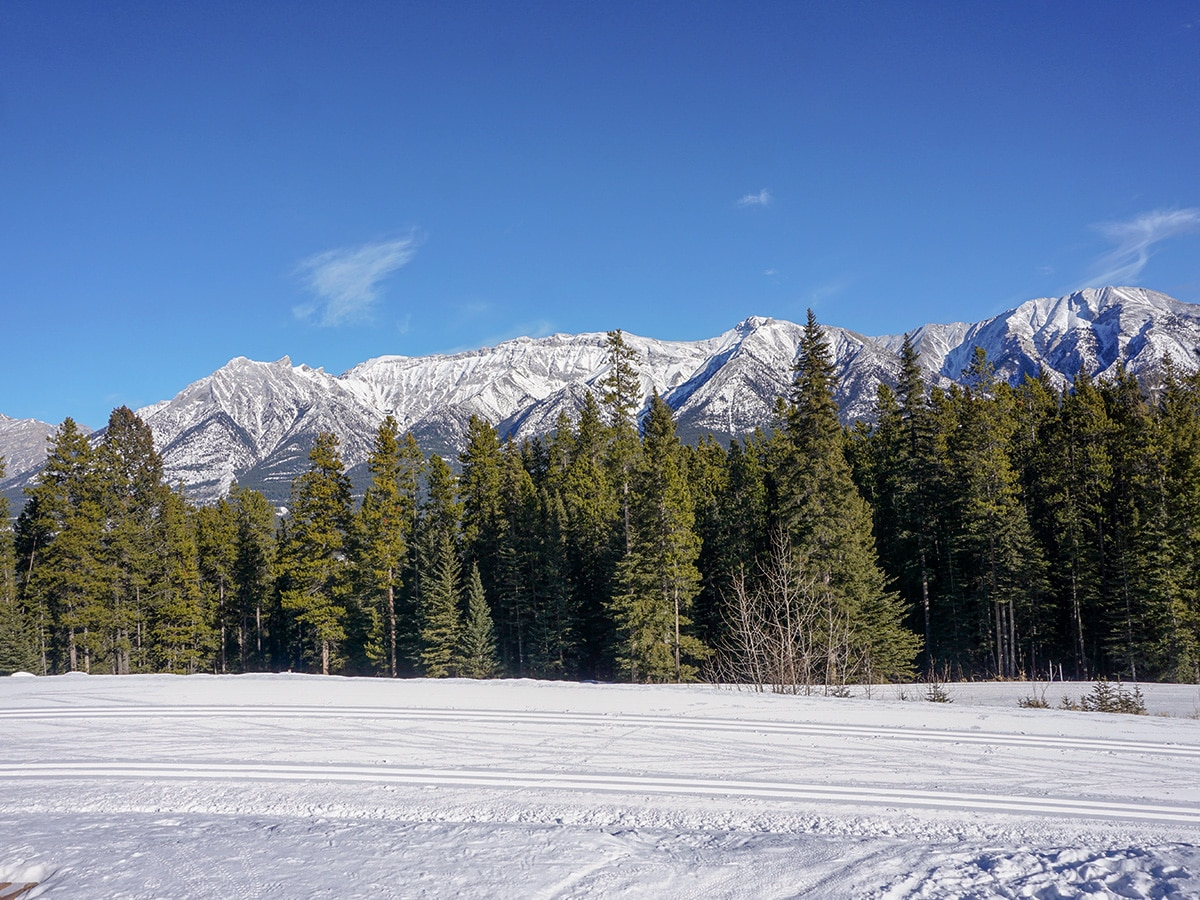 Great track on Canmore Nordic Centre XC ski trail in Canmore near Banff National Park