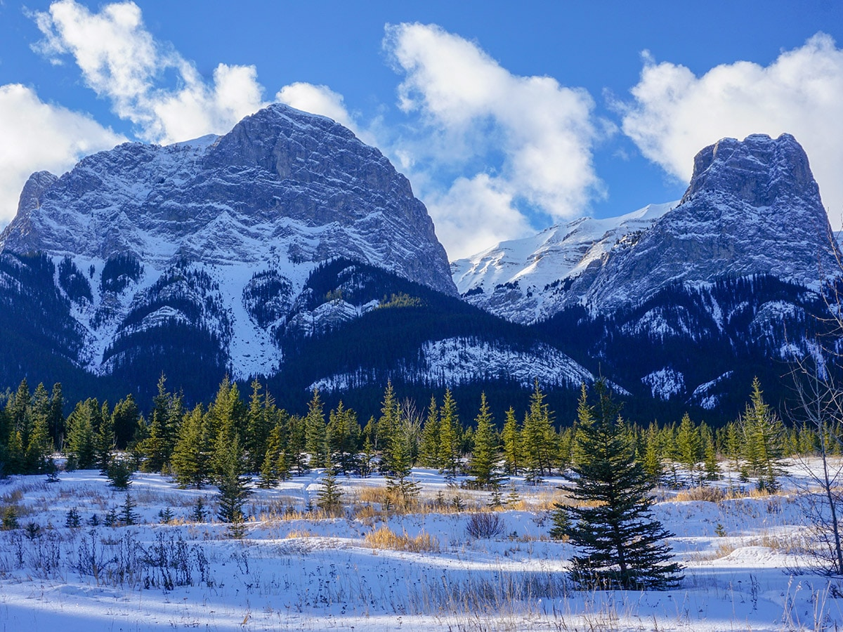 Beautiful scenery on Canmore Nordic Centre XC ski trail in Canmore near Banff National Park