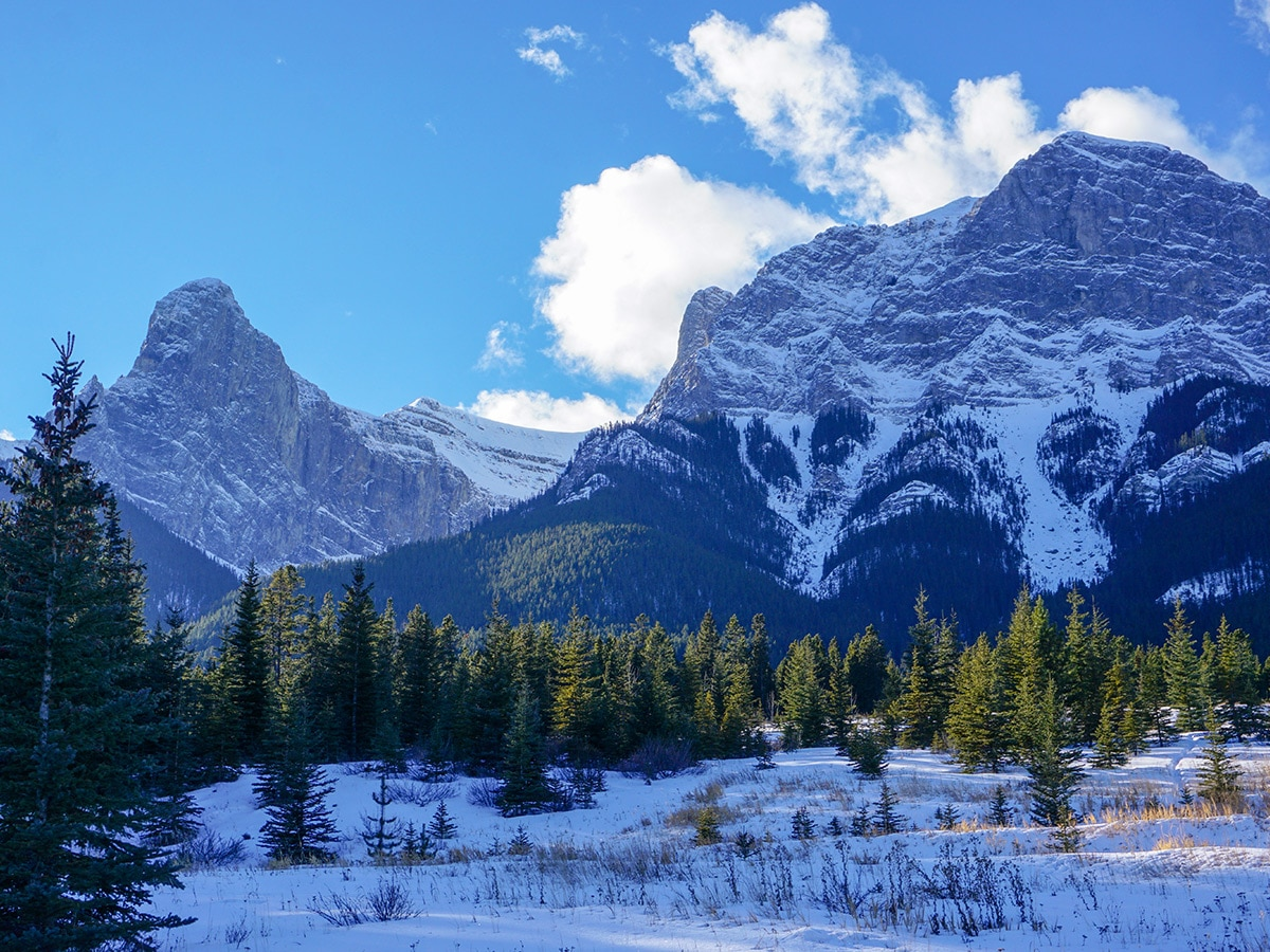 Winter views on Canmore Nordic Centre XC ski trail in Canmore near Banff National Park