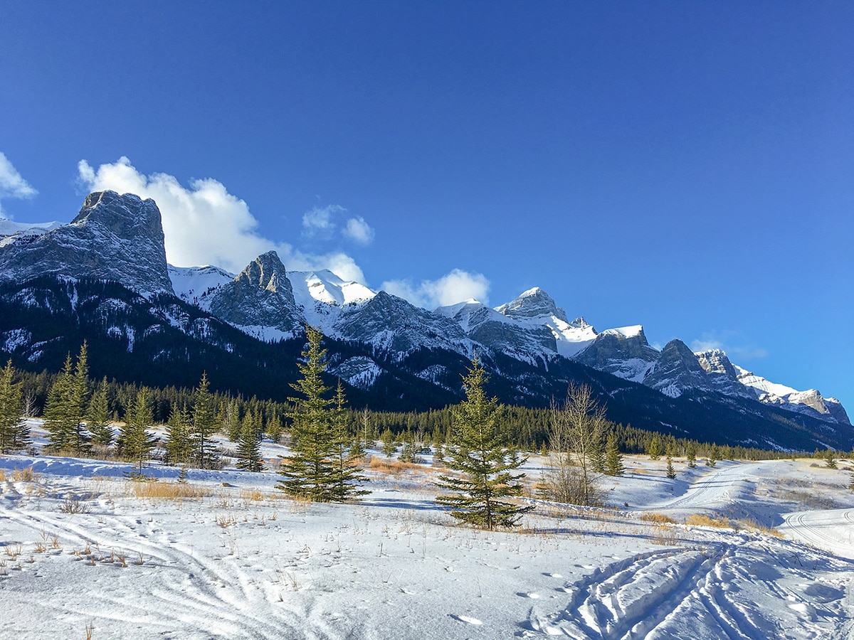 Scenic winter views on Canmore Nordic Centre XC ski trail in Canmore near Banff National Park