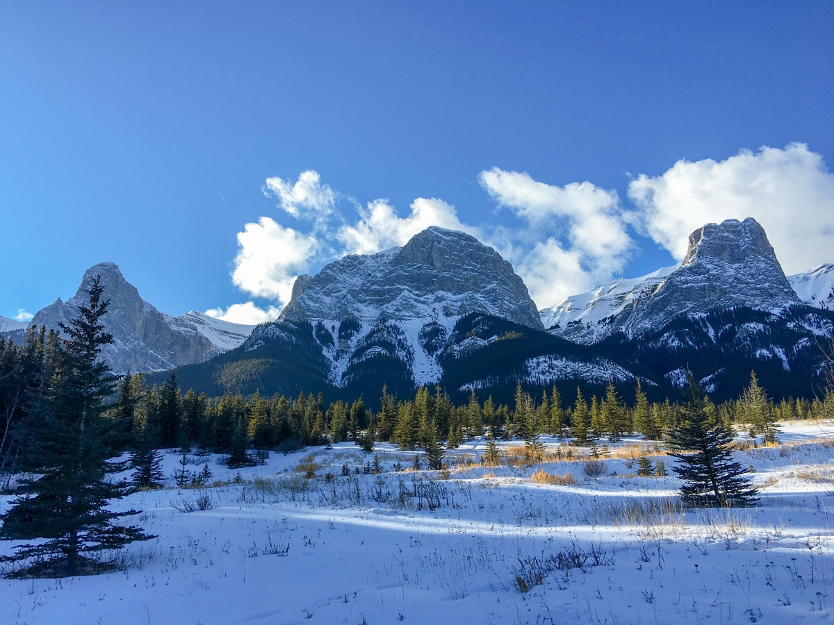 Canmore Nordic Centre cross country skiing trail