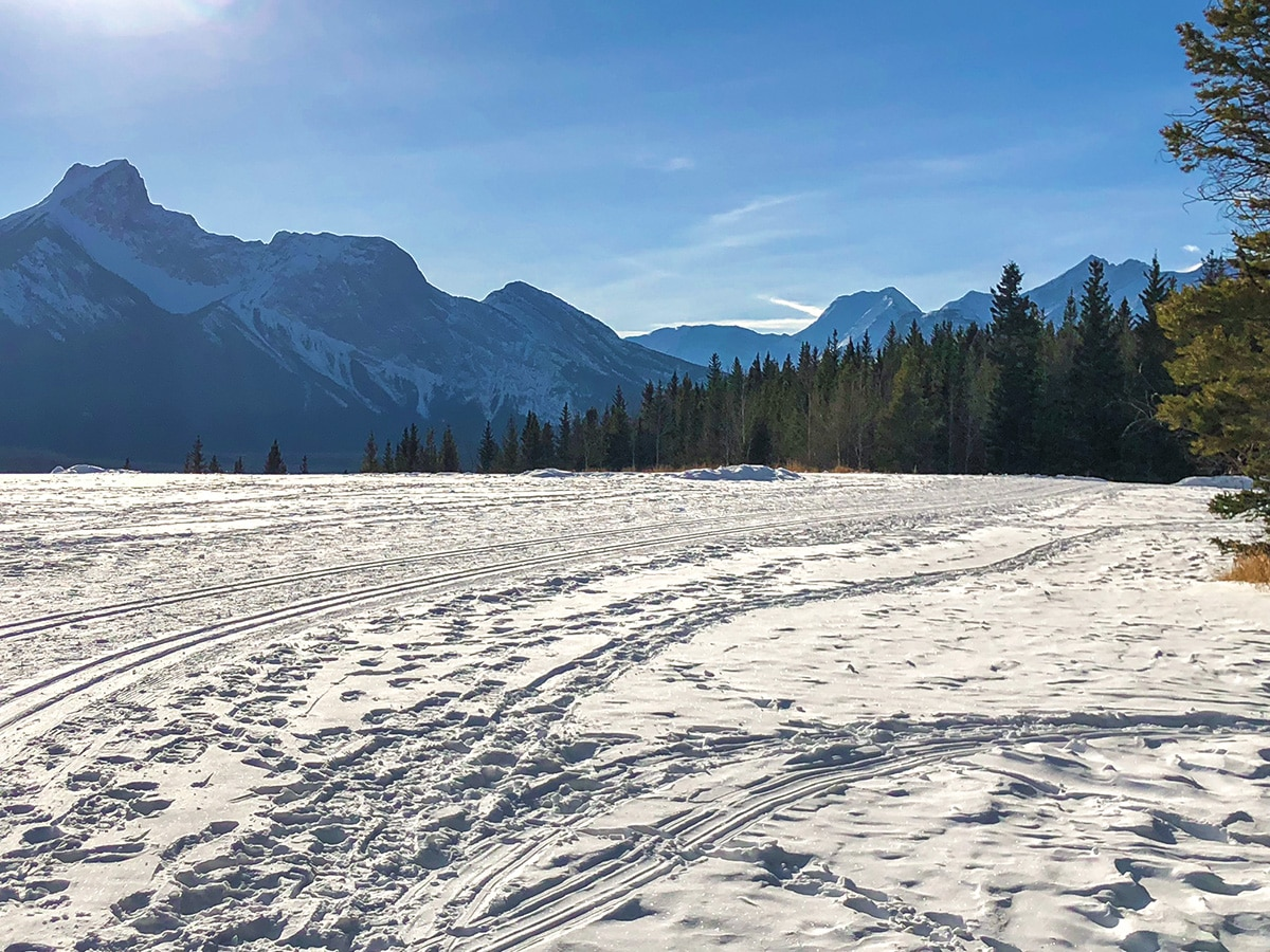 View from the plateau on Ribbon Creek XC ski trail near Kananaskis and Canmore