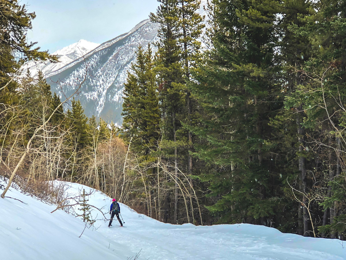 Cross country skiing from Skogan pass, Alberta