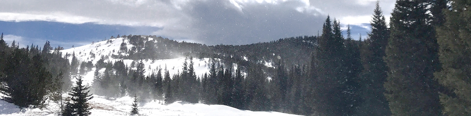 Panorama of Caribou Hill snowshoe trail in Indian Peaks, Colorado