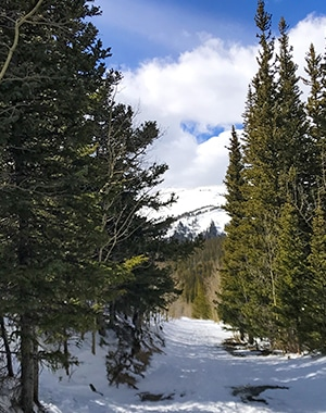 Caribou Hill snowshoe trail in Indian Peaks, Colorado