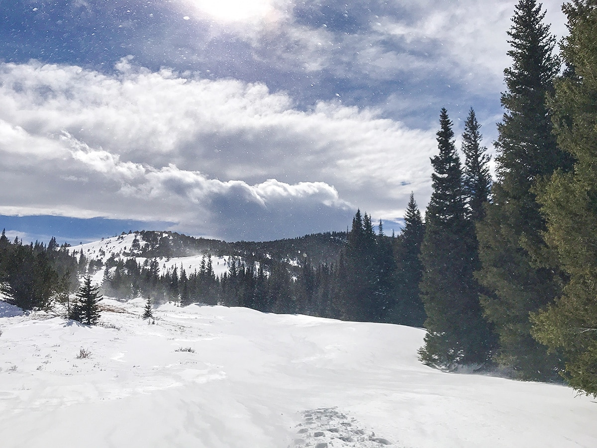 Snow on Caribou Hill snowshoe trail in Indian Peaks, Colorado