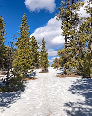 Dot snowshoe trail in Indian Peaks, Colorado