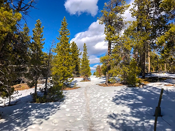 Scenery of Dot snowshoe trail in Indian Peaks, Colorado