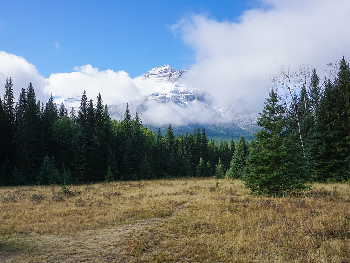 Big views on Banff to Lake Louise road biking route in the Canadian Rockies