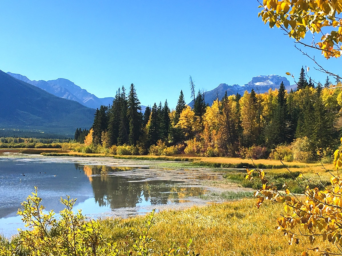 Vermilion Lakes road biking route in Banff National Park surrounded by beautiful mountains