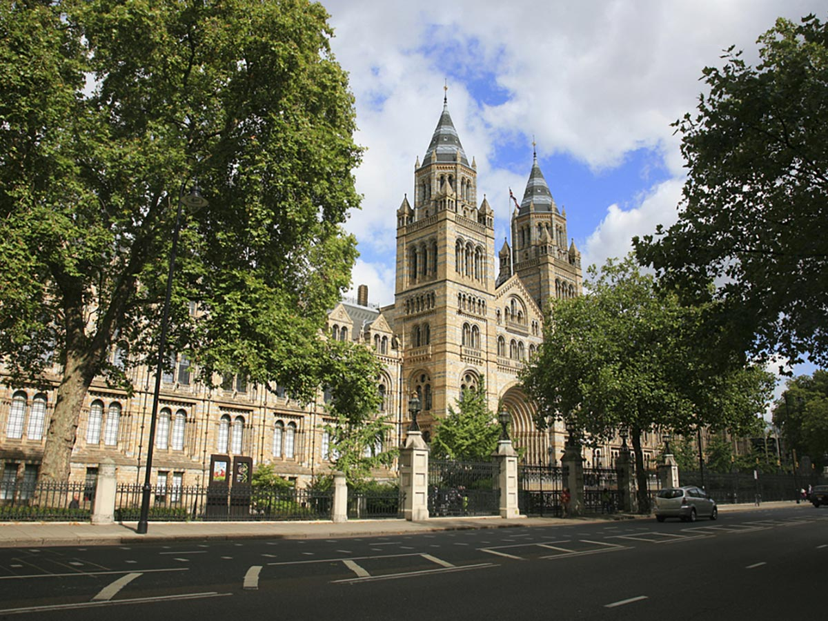 Natural History Museum on Marylebone, Mayfair and Belgravia walking tour in London, England