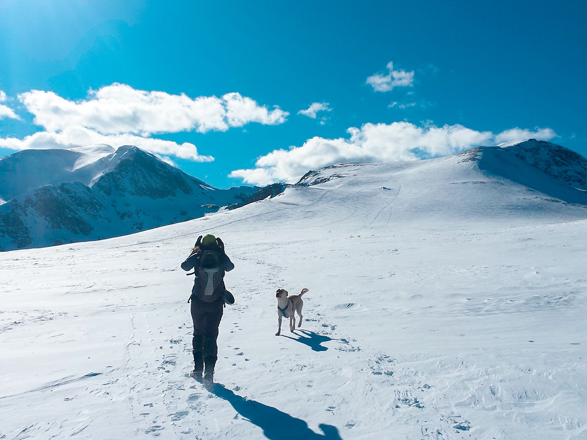 Hiker with a dog on St. Mary's Glacier hike in Denver, Colorado